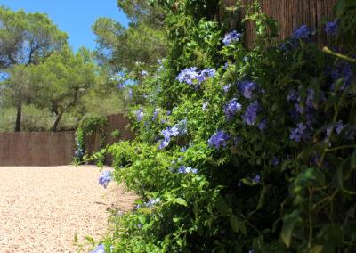 flower garden in villa sueño la mola formentera