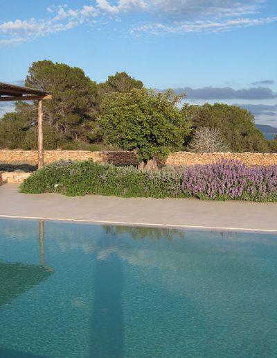 lovely lavanda plant on pool side villa eloisa