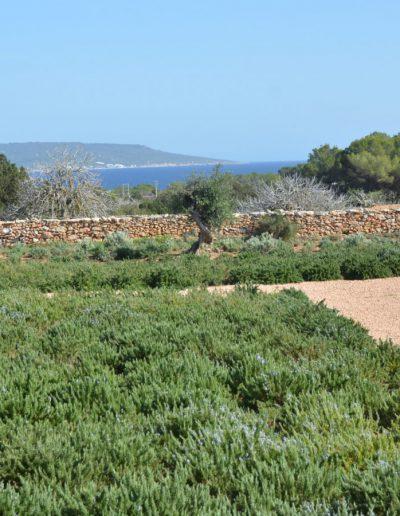breath taking sea view from the garden of villa eloisa