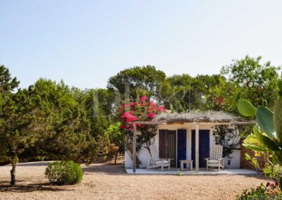 plants surrounding the annex of the typical formentera villa casanita for rent