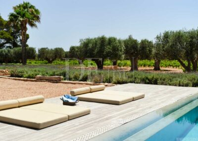 green nature and trees surrounding the pool lounge of villa casanita for rent in formentera